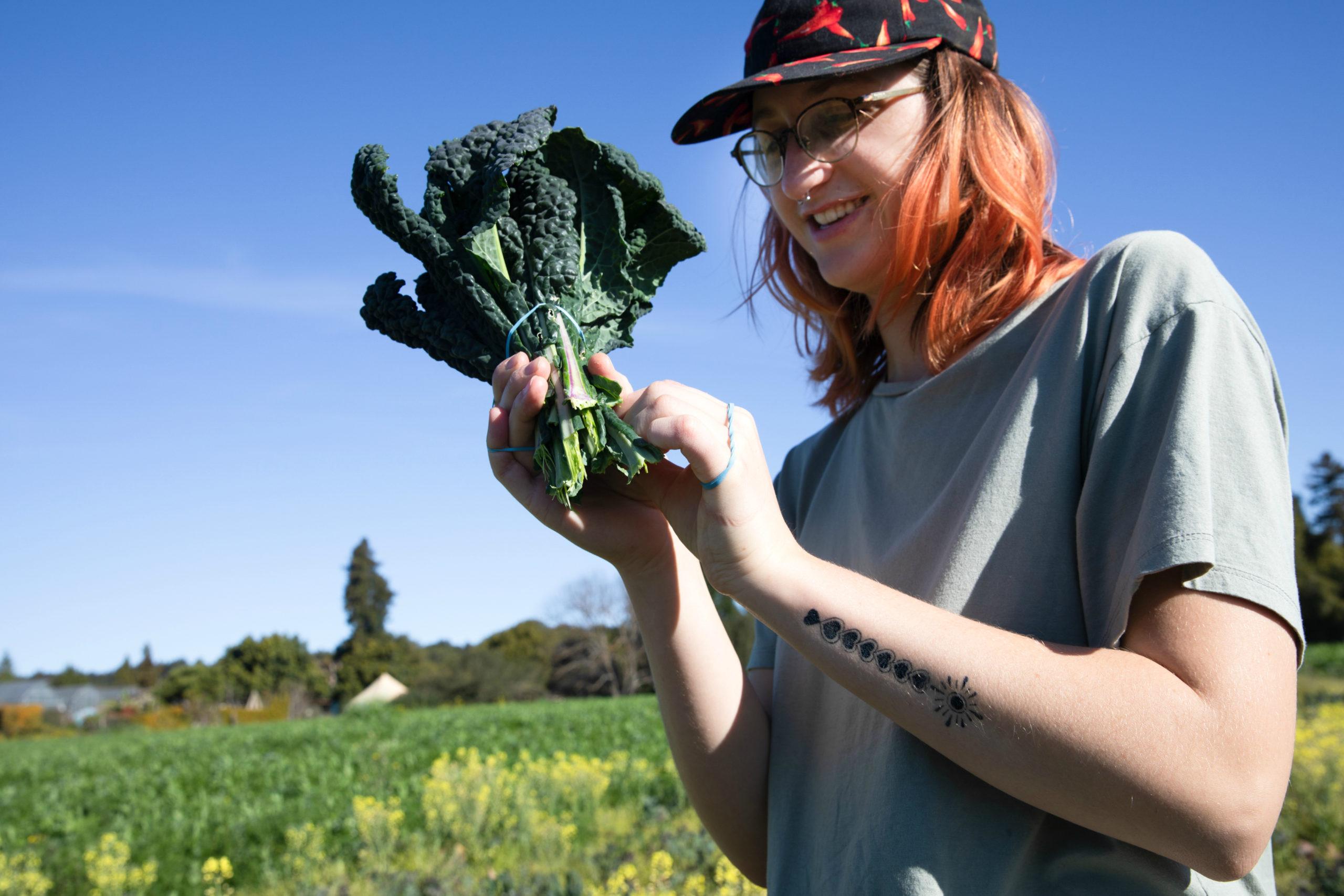 2-26-20-farm-harvest